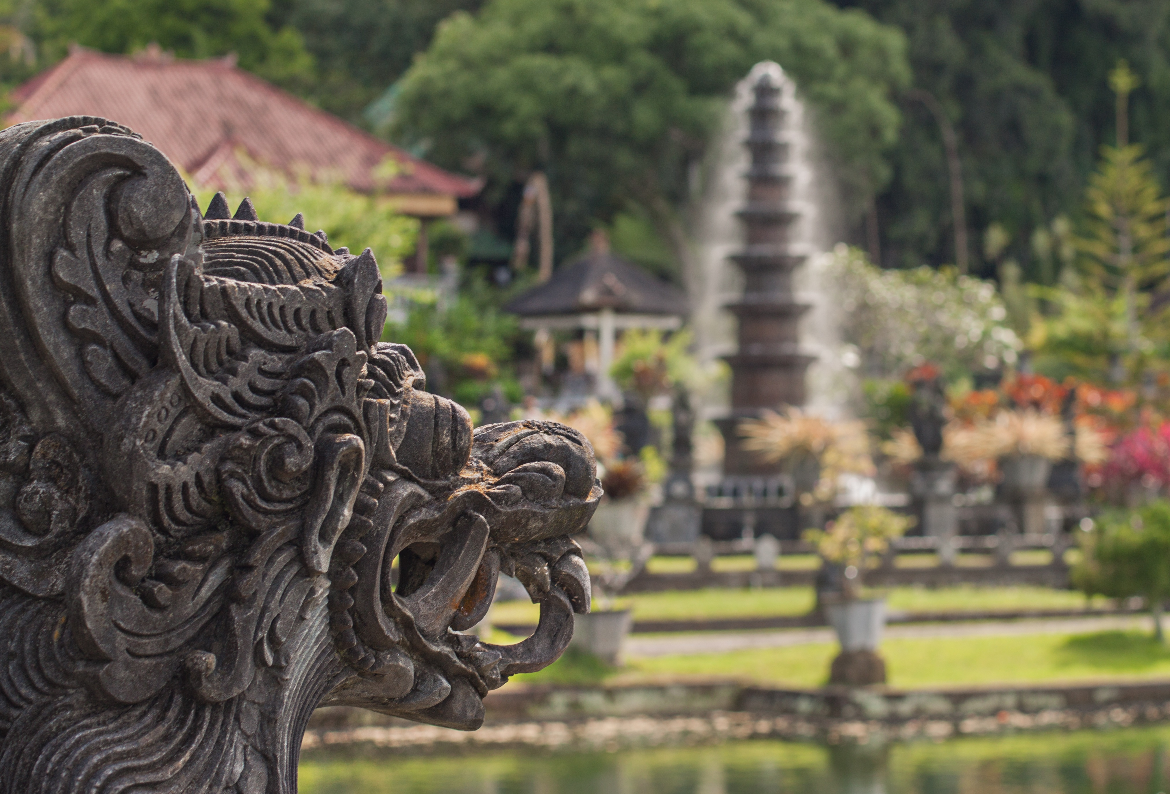 Things to know before when planning a Bali Reconnaissance Trip, Where to stay, what you need to know about Passports, Vaccinations and Visas.